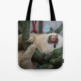 Sleeping baby sloth Tote Bag