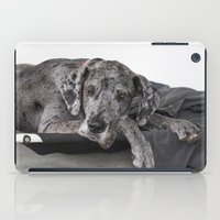 great dane iPad Cases featuring Great Dane waiting by Deborah Janke