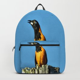 Melody Of Freedom Backpack