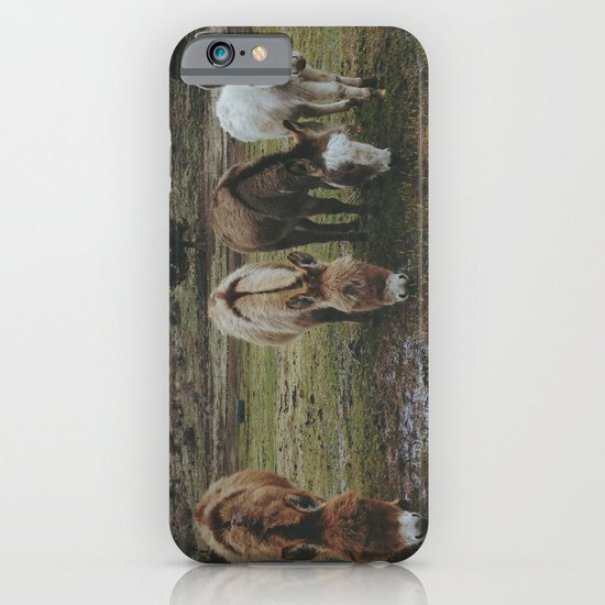 Miniature Donkeys iPhone & iPod Case