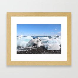 Glistening Ice Framed Art Print