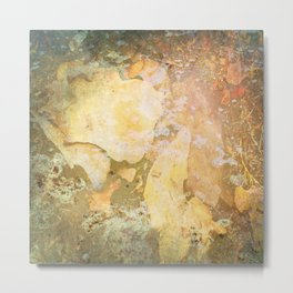 Water and bark abstract texture Metal Print