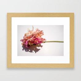 Dhalia Framed Art Print