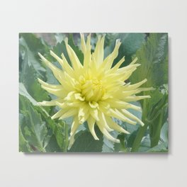 Yellow Surprise Metal Print