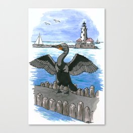 Double-crested Cormorant at Chicago Lakefront Canvas Print