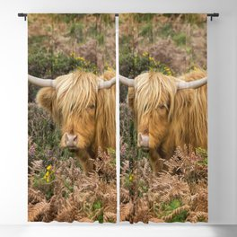 Highland Lad Blackout Curtain
