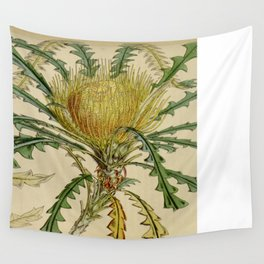 "Curtis's Botanical Magazine, ""Dryandra nobilis. Handsome Dryandra"" Wall Tapestry"