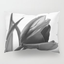 Tulip Blooming In Black And White Pillow Sham