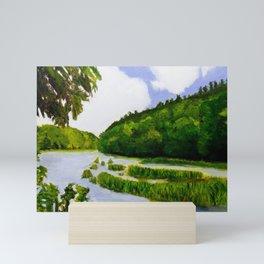 Cahaba River Shoals Mini Art Print