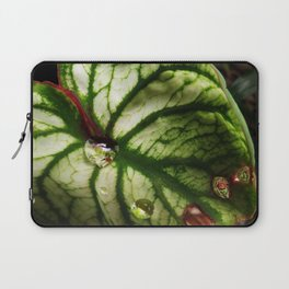 Leaf with Rain Drops Laptop Sleeve