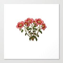 Magical flora #14 Canvas Print