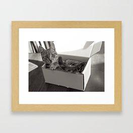 Plz Not Open Til Kitsmas Framed Art Print