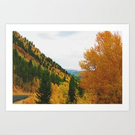 Firey Fall Art Print