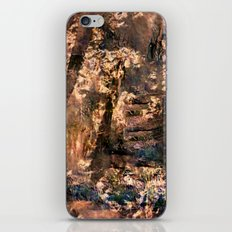Lost In The Past iPhone & iPod Skin