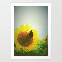 sunflower Art Prints featuring Sunflower by Falko Follert Art-FF77