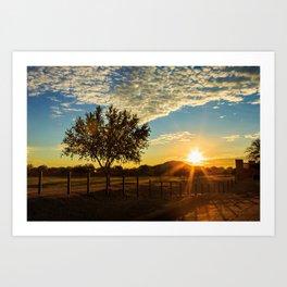 Sunset Through The Tree Art Print
