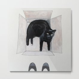 black cat box Metal Print