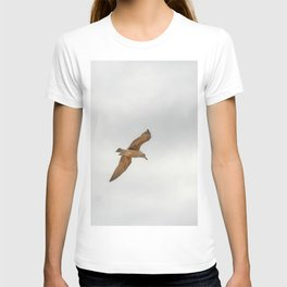 Seagull bird flying T-shirt