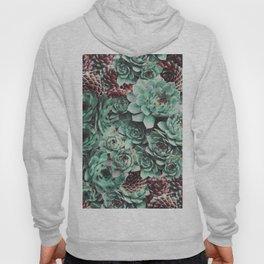 Succulent Sempervivum Plants Hoody