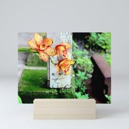 Elemental Exposure Mini Art Print