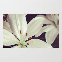 lilys Rug