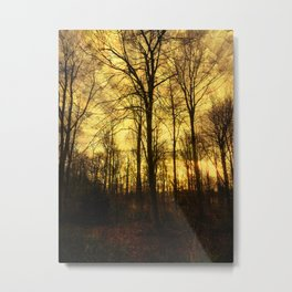 An Evenings Stroll. Metal Print