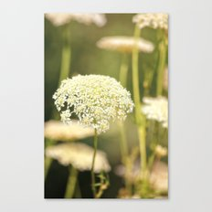 Gently Canvas Print