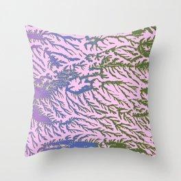 Pink, Green, Blue and Purple Cedar Throw Pillow