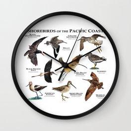 Shorebirds of the Pacific Coast Wall Clock