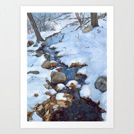 Weir brook Art Print