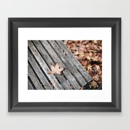 solitary Framed Art Print