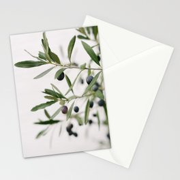 Green Olive branches | Olive Tree | Travel Photography | Art Print | Minimalistic | Fine Art Print Stationery Cards