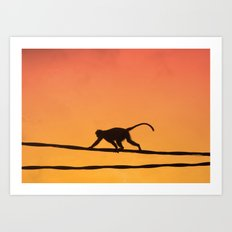 On The Wires Art Print