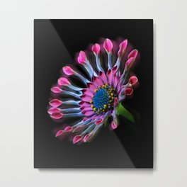 Tropical Daisy Metal Print