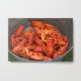 Lobster Pot Metal Print