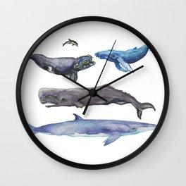 Cetaceans Wall Clock