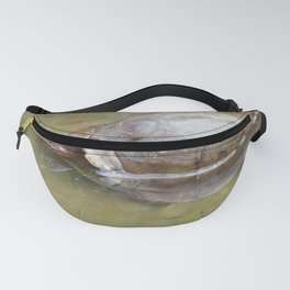 Bathing box turtle Fanny Pack