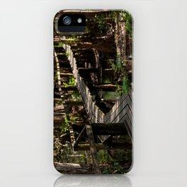 Cyprus Swamp iPhone Case