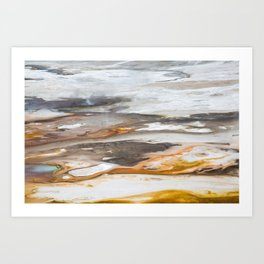 Yellowstone National Park - Thermophiles, Norris Geyser Basin Art Print