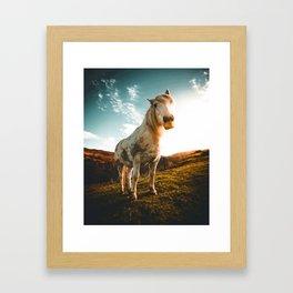 Horse (Color) Framed Art Print