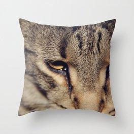 Kitties are so nice. Throw Pillow