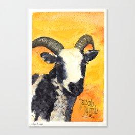Jacob Lamb Canvas Print