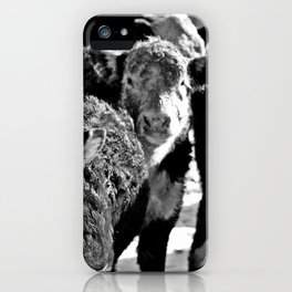 B&W Baby Cows iPhone Case