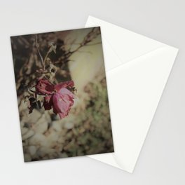 December Rose Stationery Cards
