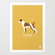 Harrier Art Print