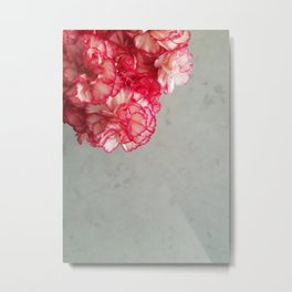 Corner  Pink Carnations Metal Print
