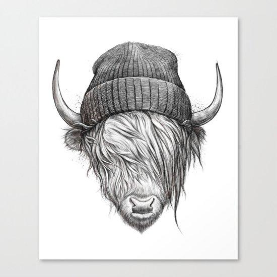 Highland cattle by nikitakorenkov