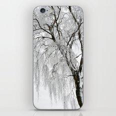 wintertime iPhone & iPod Skin
