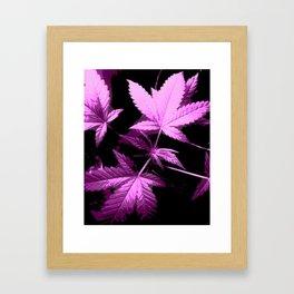 DaPlant Purple - #GreenRush Collective Framed Art Print