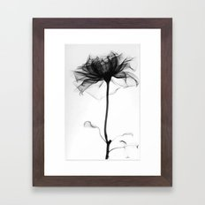 Pretty Xray Framed Art Print